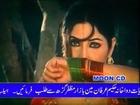 Saima & Shan- Shikar Dupairey