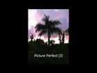 Picture Perfect [3]
