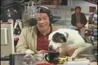 Free Radio's Dog Humping John Stamos' Leg- a Parry Gripp ...