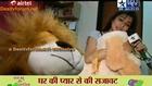 Iccha Ka Pyara Sa Ghar!